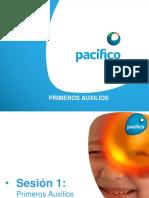 PRIMEROS AUXILIOS AREQUIPA 2015.pptx