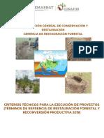 Criterios Técnicos Para La Ejecución de Los Proyectos 2019 (Componente III)
