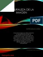 naturaleza de la imagen-converted.pdf