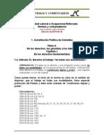 Estabilidad Laboral Reforzada 1.4. Constitucion Art. 25