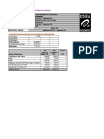 Final - OSIEA Financial Report Template