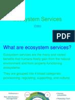 ecosystem services  3