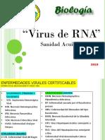 3d 2019 Unidad 3d Virus Rna