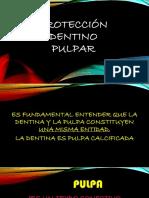 PROTECCIÓN_DENTINO_PULPAR.pdf