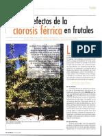 AbadiaJ_Vrural_2004.pdf