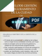 MODELO DE GESTIÓN DDDDDD