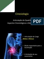 Cinesiologia - Quadril 1