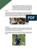 Animales en Peligro de Extincion de Guatemala