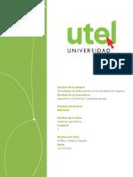 Tecnologías de Información en La Estrategia de Negocio Tarea 2 - Copia