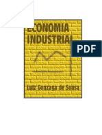 lIVRO DE ECONOMIA INDUSTRIAL LUÍS SOUZA.pdf