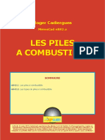 nB42a_PilesComb.pdf