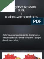 Vegetacao Brasil Convertido