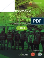 DIPLOMADO-SSOMA-18-05-2019-11.pdf
