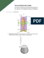 Clasificacion de Huesos