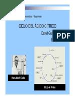 Ciclo de Krebs (1).pdf