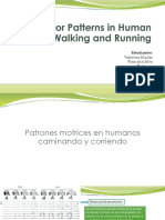 Motor Patterns in Human Walking and Running