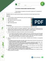 Articles-19420 Recurso Docx
