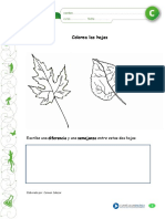 Articles-30319 Recurso PDF