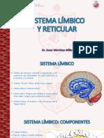 SISTEMA LIMBICO Y RETICULAR - USMP 10-10-18.1.pdf