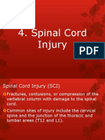 4. Spinal Cord Injury