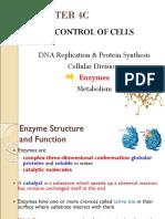 MF009 4C Enzyme James L3