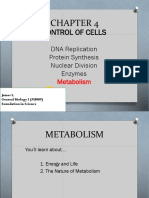 MF009 4D Metabolism James L4