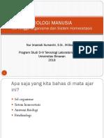 BM1 Sel-Organisme, Homeostasis