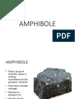 Amphib Ole