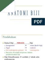 Anatomi Biji