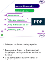 Diseases and Immunity Nw 2