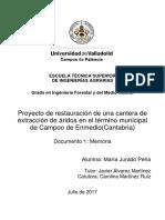 TESIS RESTAURACION DE CANTERAS PERU.pdf