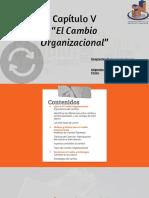Capítulo V Desarrollo Organizacional