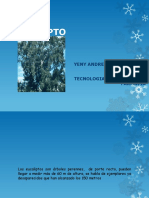 eucalipto-131202202332-phpapp02