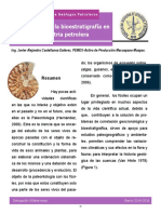 Bioestratigrafia Industria Petrolera