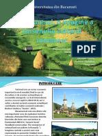 Maramuresul, o Imagine a Tursimului Cultural Romanesc