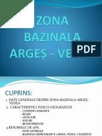 zona bazinala Arges-Vedea.pptx