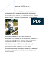 Breeding-of-Lipizzaners-horses.docx