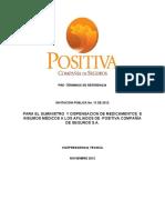 Preterminos Invitacion Publica No. 13