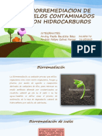 Biorremediacion de Suelos Contamindos Con Hidrocarburos