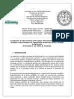 Protocolo Grupo 1 Grillos