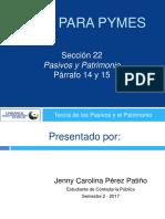 Niif Para Pymes Seccion 22 14-15