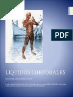 LIQUIDOS.docx