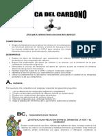 Guia-Del Carbono 2