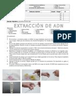 e028e Gen Tica Molecular ADN Extracion 9 (2)