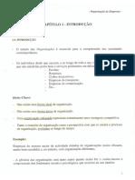 Organização de Empresas Introdução.pdf