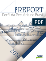 Relatorio ABIEC 2019.pdf