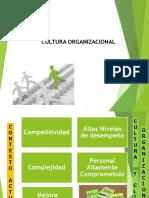 Cultura Organizacional 2019