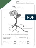 cn_cidelavida_1y2B_N11.pdf