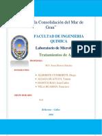 Informe Nº11 Tratamiento de Aguas