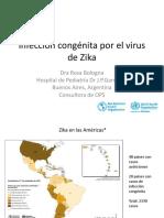 Infección RN Zika-Bolivia